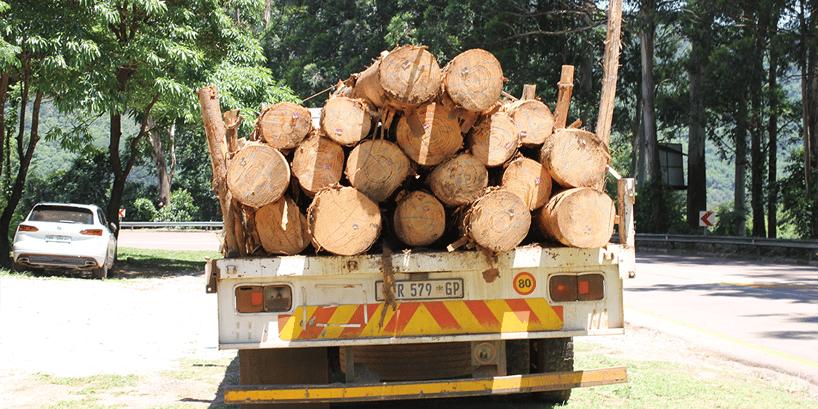 logging truck on road
